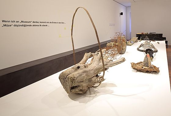 Exhibits made from wood and roots lye on a long white table.